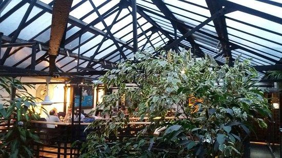 The Ubiquitous Chip : Lumière et végétation inondant le patio...