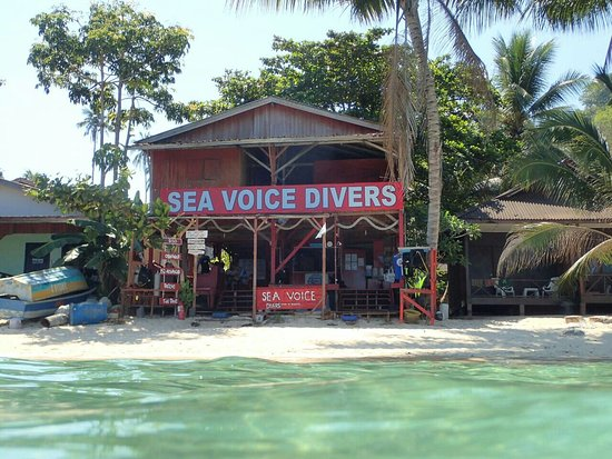Sea Voice Divers