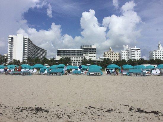The Ritz-Carlton, South Beach: photo0.jpg