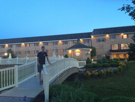 Bird-In-Hand Family Inn: My fiancé enjoying the tranquility of The bird in hand.