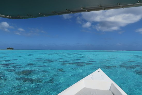 Moorea, French Polynesia: Clear Blue Water