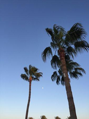 Baron Resort Sharm El Sheikh: photo0.jpg