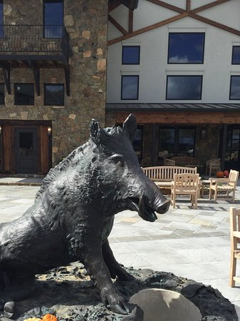 Leesburg, Βιρτζίνια: Wild boar bronze in the courtyard