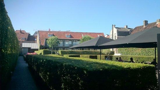 Hotel Montanus: DSC_0667_large.jpg