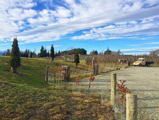 Wanaka, Yeni Zelanda: photo1.jpg