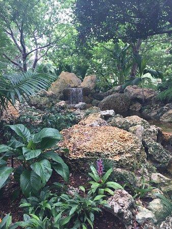 Deerfield Beach Arboretum: photo0.jpg