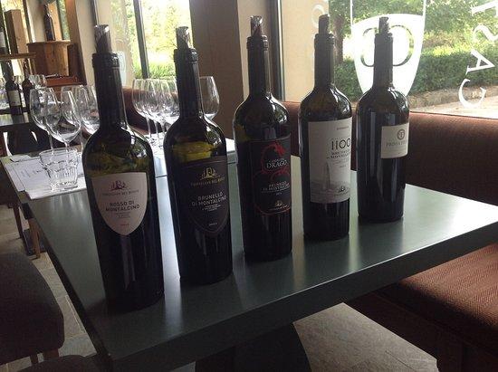 Montalcino, Italy: Gode vine