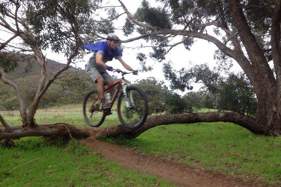 Melrose, Austrália: photo3.jpg