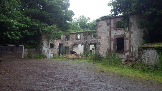 Killarney International Youth Hostel照片