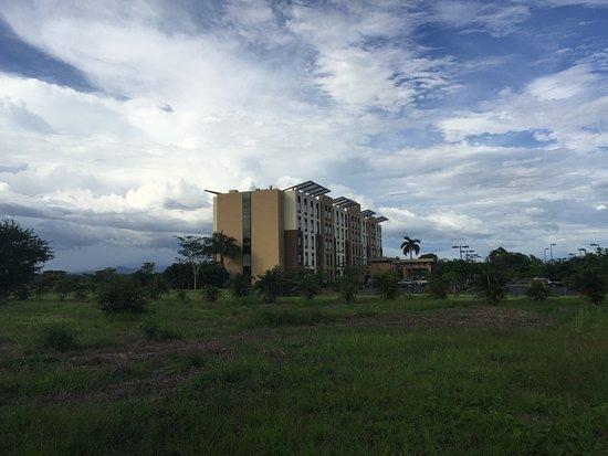Фотография Hilton Garden Inn Liberia Airport