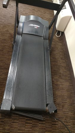 วิลโลว์บรูก, อิลลินอยส์: Fitness center treadmill
