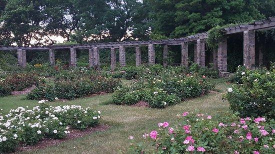 Boerner Botanical Gardens: 20160721_184739_large