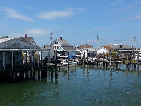 Tangier Island, VA: photo2.jpg