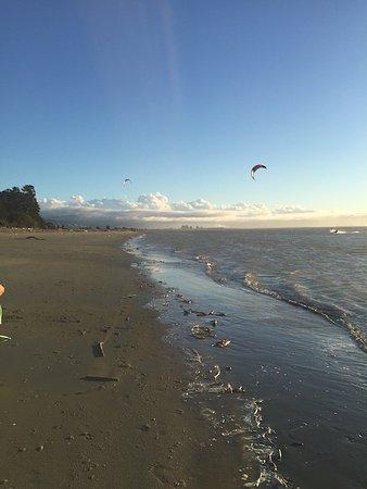 Nelson, Selandia Baru: Tahunanui Back Beach - wind surfers