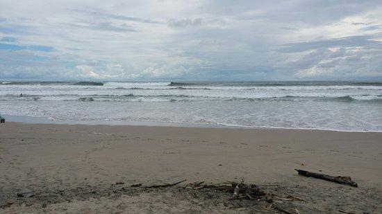 Nosara Beach (Playa Guiones): 20160719_143400_large.jpg