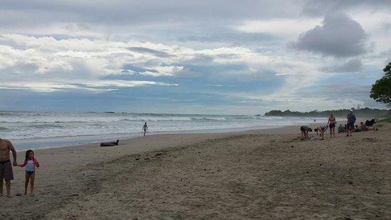 Nosara Beach (Playa Guiones): 20160719_143352_large.jpg