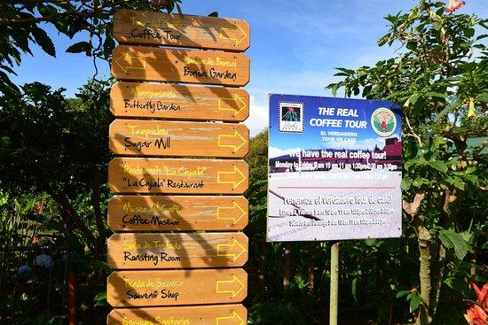 Poas Volcano National Park, Kosta Rika: Entrance to the Coffee Plantation.