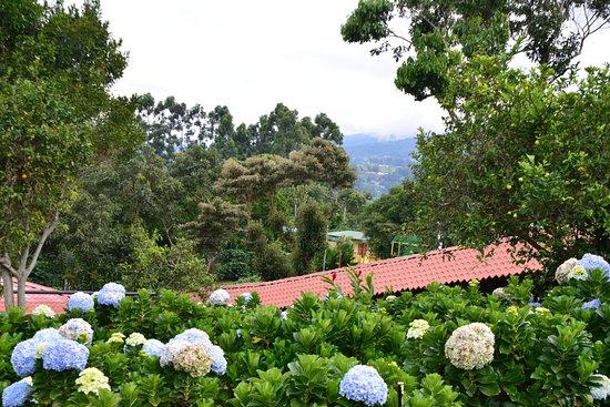 Poas Volcano National Park, Kosta Rika: View from Doka Estate
