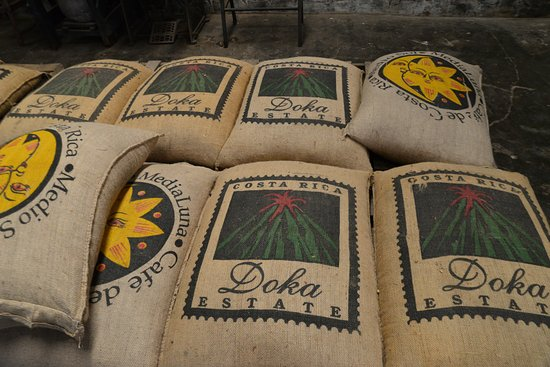 Poas Volcano National Park, Kostaryka: Variety of Coffee Bags for export