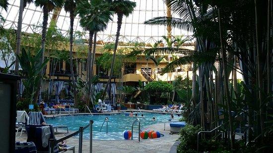 Harrah's Resort Atlantic City: 20160720_094022_large.jpg
