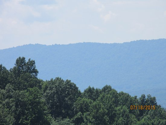 Charlottesville, Βιρτζίνια: Overlooking the orchards - Blue Ridge Mountains in the background.