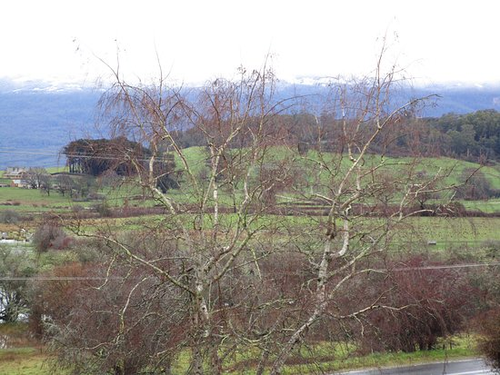 Mole Creek, Australia: The beautiful, ever changing view from our Cabin.