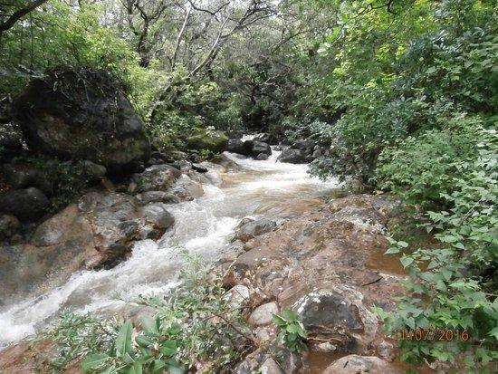 Hacienda Guachipelin: Río en la Hacienda
