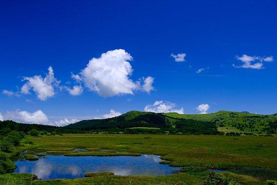 Shimosuwa-machi, Japonya: 八島ヶ池の全景