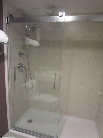 Saddle Brook, NJ: Walk in shower