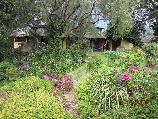 San Lucas Toliman, Guatemala: Foto tomada desde el jardín hacia las habitaciones