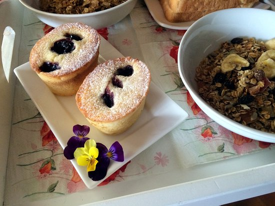 Cambridge, Nova Zelândia: Tasty breakfast- blueberry friands