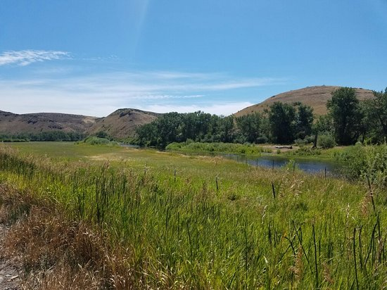 Weiser River National Recreation Trail