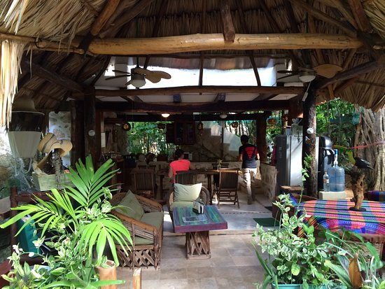 La Selva Mariposa: This was were we ate breakfast every morning.