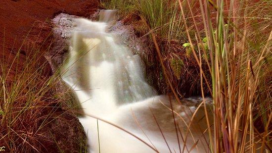 Waimea Canyon: photo1.jpg