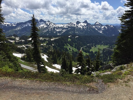 写真Mount Rainier枚