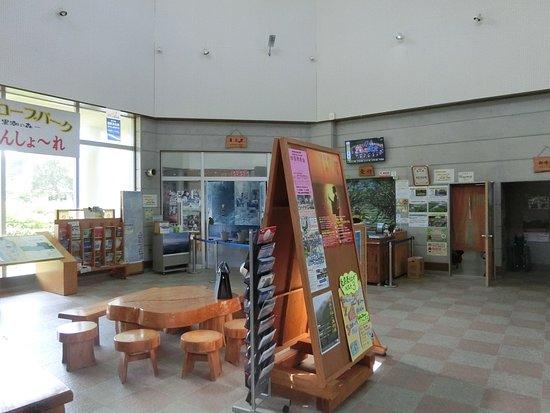 Amami, ญี่ปุ่น: 隣が食堂