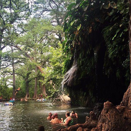 Spicewood, TX: Main Pool and Rope Swing