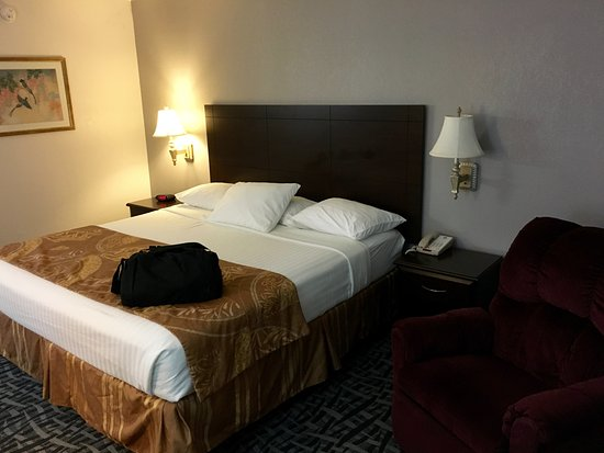 BEST WESTERN Tree City Inn: King size room with recliner
