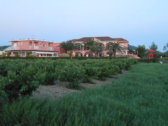 Grapevines Hotel รูปภาพ