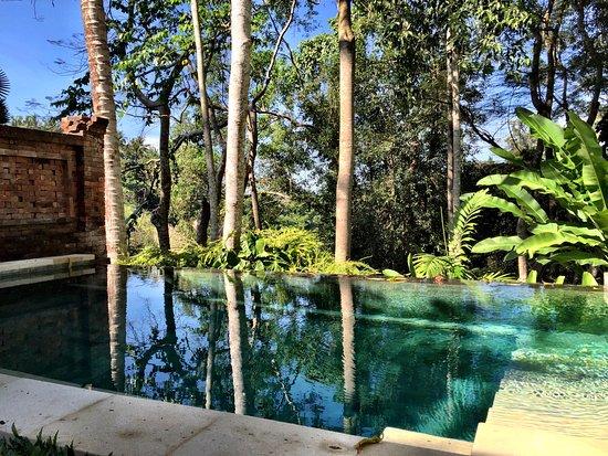 Infinity Pool In The Pool Villa Picture Of Como Uma Ubud Bali