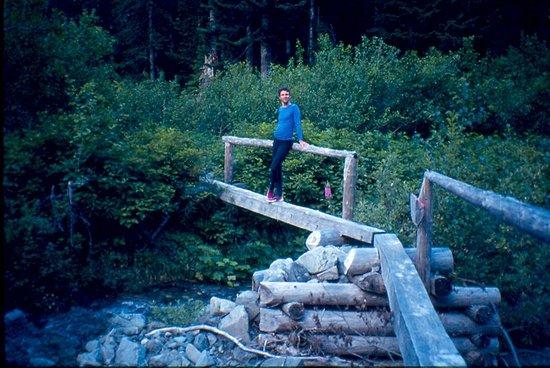 Della Falls: bridge