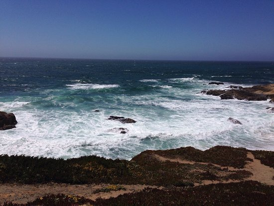 Bodega Head: photo0.jpg