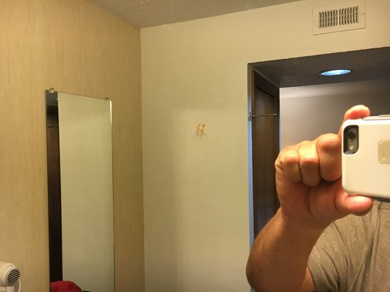 ‪‪Pleasanton‬, كاليفورنيا: Here is another mosquito I squashed on the bathroom mirror.‬