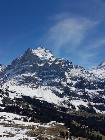 Grindelwald, Ελβετία: 20160506_132813_large.jpg