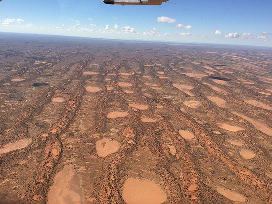 Flinders Ranges National Park, Australië: photo1.jpg