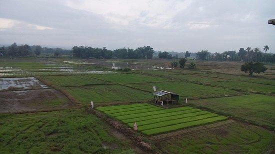 Landscape - Picture of Khunyuw Hotel, Fang - Tripadvisor