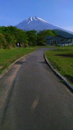 Campica Fuji Grinpa Picture