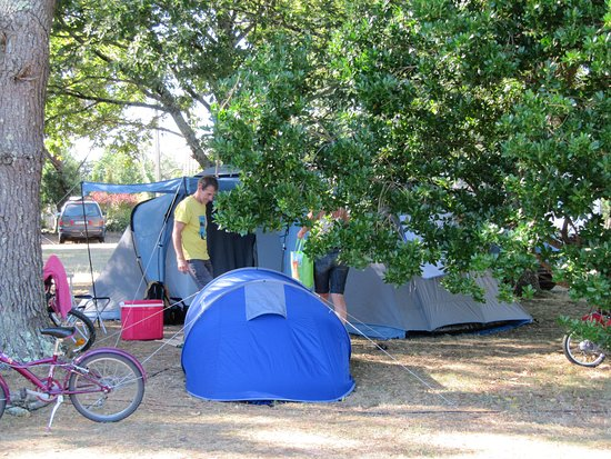 Carcans, France: Vue camping 1