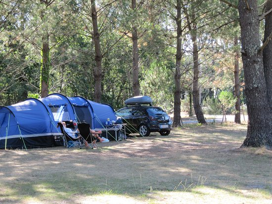 Carcans, France: vue camping 2