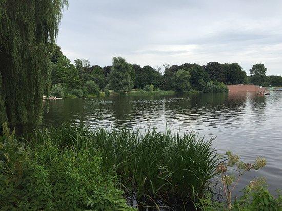 Stadtpark: photo8.jpg